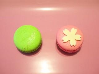 桜かさね(201004@マドモワゼルマカロン)